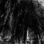 krenek michal fotograf, radotín biotop praha,