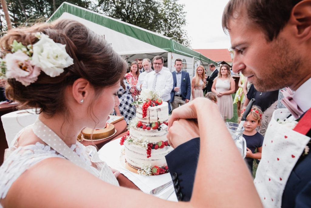 krájení dortu, svatba plasy, klaster, letiště , aeroklub, svatba na letiši, křenek, svatební fotograf, svatba podzim, tatra,