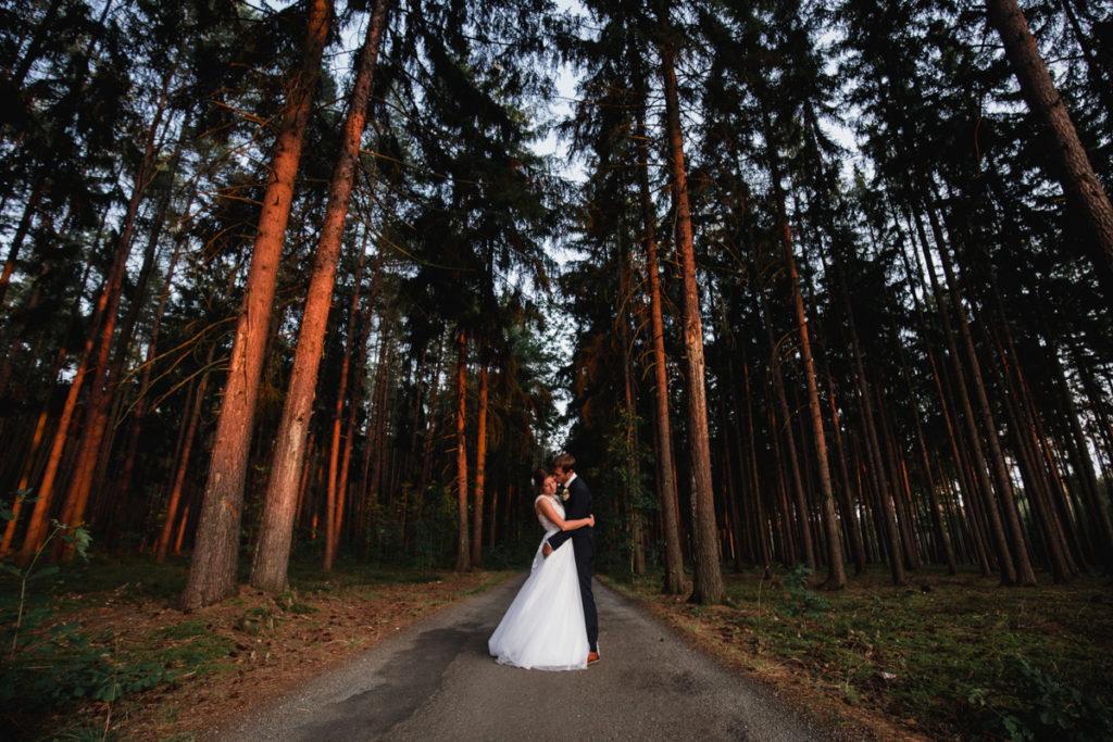 svatba plasy, klaster, letiště , aeroklub, svatba na letiši, křenek, svatební fotograf, svatba podzim, tatra, v lese