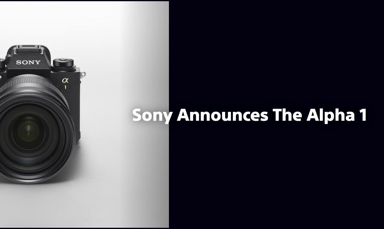 sony A1 , Sony alfa, Sony Alpha A1, A1 Sony, new Sony Alpha, first impression Sony Alpha A1